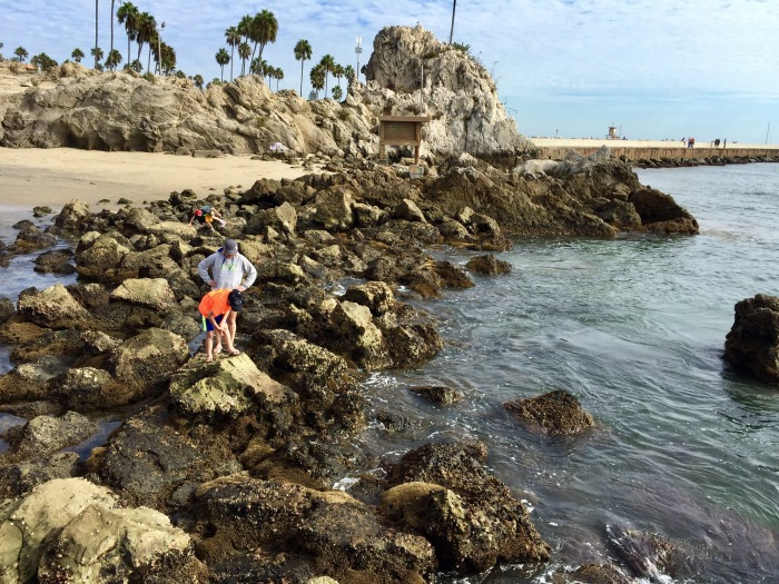 Day 32 – Thankful for the Boys' Appreciation ofNature