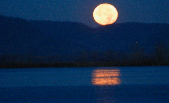 Day 48 – Thankful for theMoon